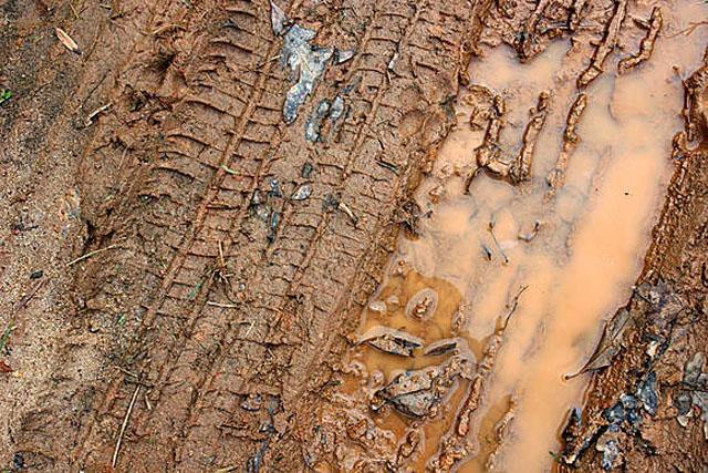 Muddy Tire Track